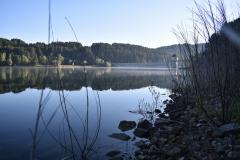 2-pescata-mattutina-Lago-Arvo-Lorica-23-07-2020-ore-7-31